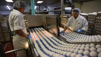 Semana del Huevo: argentinos consumen más de 274 unidades al año