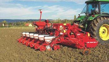 Trigo: la siembra agotó la oferta de semillas