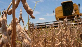 Diputados: prorrogan el tratamiento de la ley de semillas