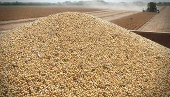 Ley de semillas: Agroindustria ya tiene listo el anteproyecto