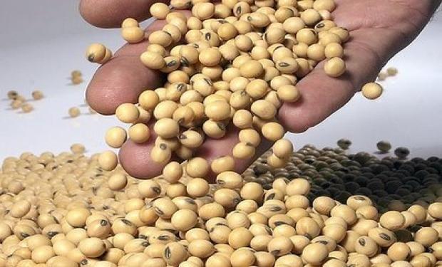 Cualquier procedimiento que se use para intervenir en la comercialización de granos deberá contar con la aprobación de Agroindustria.