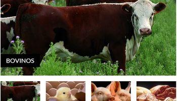 El desafío de liderar la oferta de carnes a nivel global
