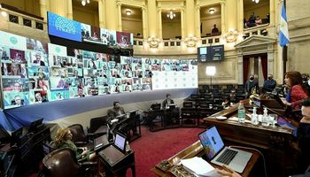 El Senado creó una comisión Bicameral para investigar la deuda de Vicentin