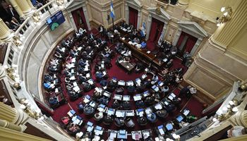El Senado aprobó el paquete de leyes económicas que impulsaba el Gobierno