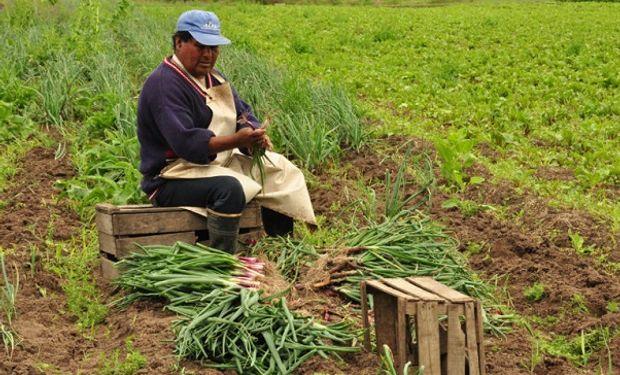 Agricultura familiar: se renuevan las inscripciones en el registro sanitario por un año