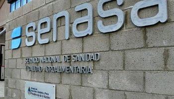 Desde el Senasa aseguran que no se verá afectada la exportación