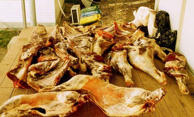 Se evitó el ingreso de carne con hueso al área libre de fiebre aftosa sin vacunación.