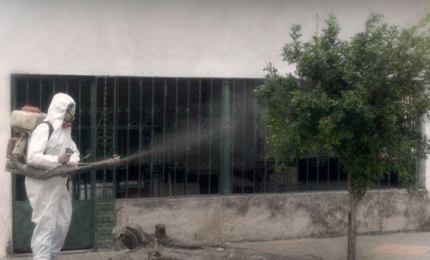 El Senasa detectó y erradicó una planta de mirto positiva al HLB en Santiago del Estero.