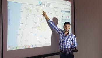 Invasión de langostas: el Senasa estimó el impacto sobre los cultivos