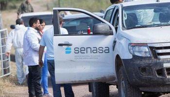 El Senasa dispuso la prohibición del uso de carbofuran