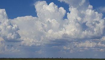 Aseguran que en el último cuatrimestre llovió hasta un 60% menos en la Región Pampeana