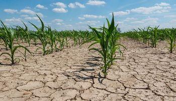 Para la NASA, Sudamérica atraviesa una sequía extrema y es la segunda más importante desde 2002