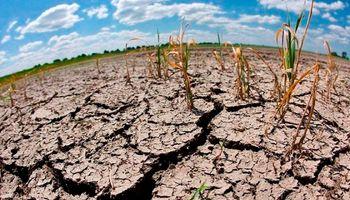 El déficit hídrico traerá consecuencias para la futura producción santafesina