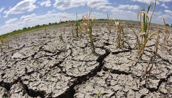 Los mercados esperan El Niño con apuestas al alza