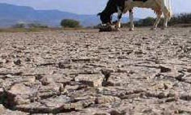 Más de 27 mil desocupados por sequía y heladas