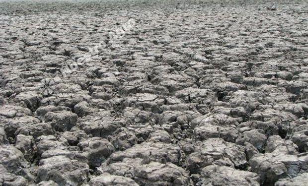 La sequía en Salta expulsa a los pequeños productores