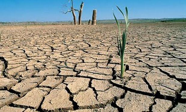 Piden que se declare emergencia agropecuaria