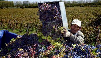 Sin acuerdo vitivinícola entre Mendoza y San Juan
