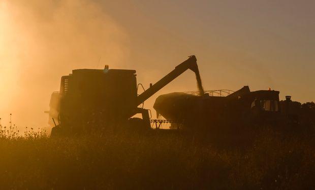 Impacto de la Ley en el sector agropecuario.