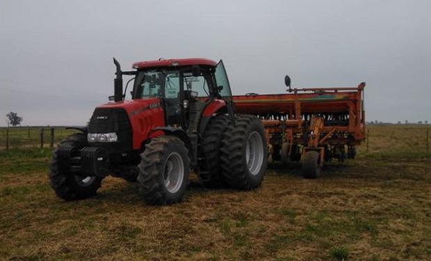 Soja y maíz: de una inversión de US$ 1.000 por hectárea, cuánto queda para el productor