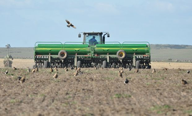 Avanza la siembra de trigo y se espera un aumento de la superficie cercano al 10 % en el centro y norte de Santa Fe
