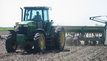 Crece un 10% la intención de siembra de maíz