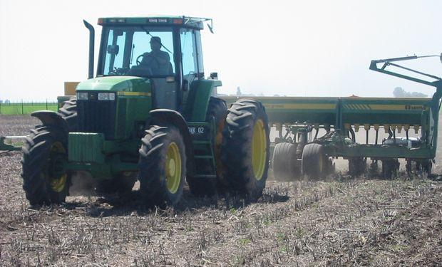 Se sembró el 8% del maíz