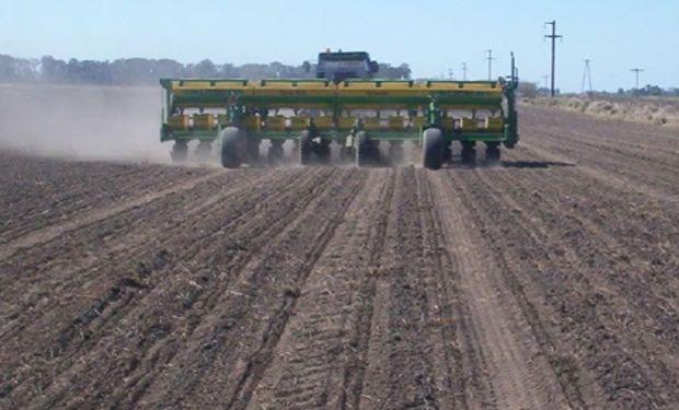 Avanza la siembra de soja