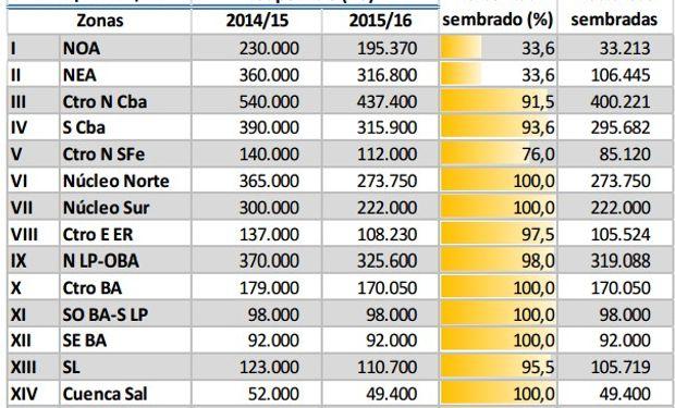 Siembra de maíz. Datos al 7 de enero. Fuente: BCBA.