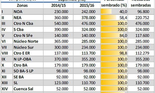 Siembra de maíz. Datos al 14/01/16. Fuente: BCBA.