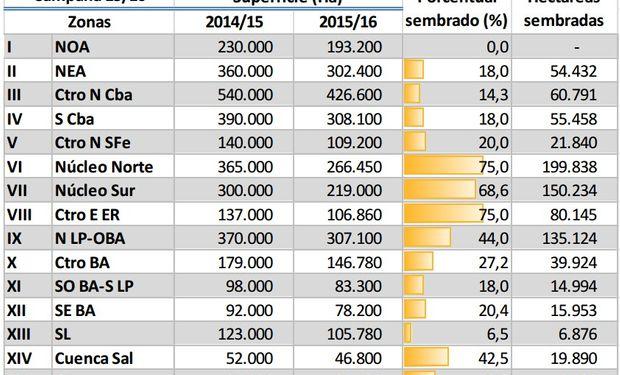 Avance se siembra de maíz. Datos al: 22/10/2015. Fuente: BCBA.