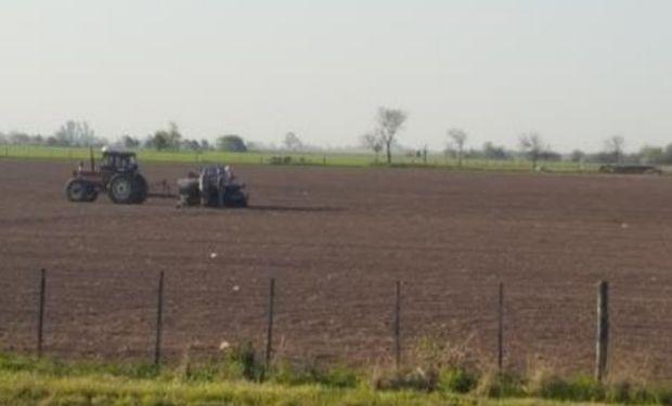Lote de rastrojo de soja, en pleno proceso de siembra de maíz de primera, en el centro oeste del departamento Castellanos.-