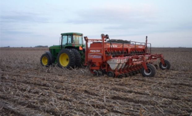 Siembra de maíz en EE.UU. alcanza el 55%