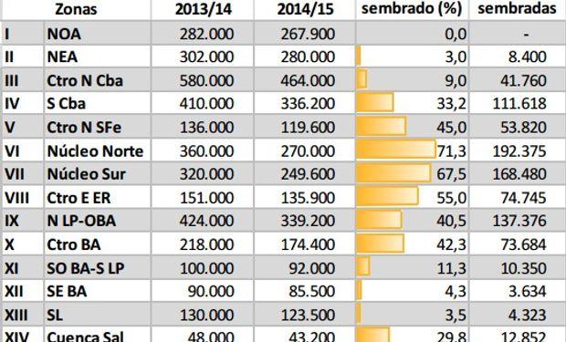 Siembra de maíz campaña 2014/15. Datos al 16/10/2014.