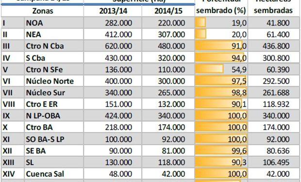 Siembra de maíz. Campaña 2014/15. Datos al: 08/01/2015