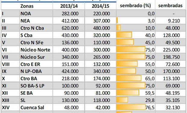 Siembra de maíz. Campaña 2014/15. Datos al: 20/11/2014