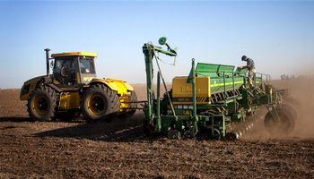 S.O.S. para el maíz: hay riesgo de tener la peor siembra en 25 años