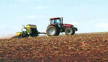 Inversión extra de US$ 1000 millones para sembrar trigo y maíz