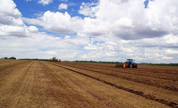 La lluvia traerá la siembra y la fertilización