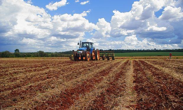 La siembra de soja asciende al 10,7% del área prevista