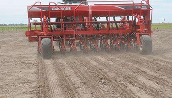 Efecto contrario: por el súper cepo y la crisis de confianza se demora la venta de la cosecha