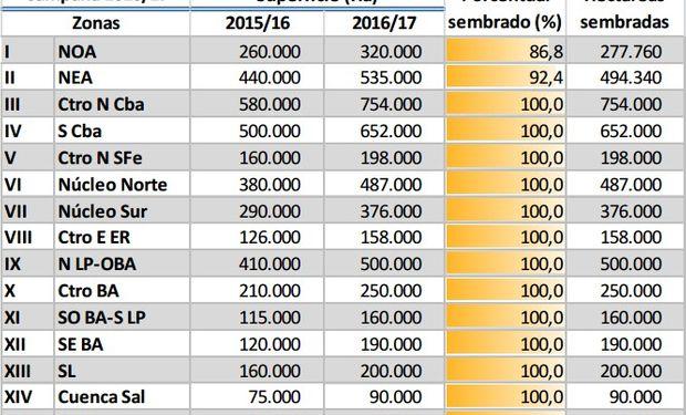 Siembra de maíz registra un avance del 98,3%.