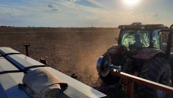 La siembra avanza pero la sequía no cede: ¿Cómo está la soja sembrada en la zona núcleo?