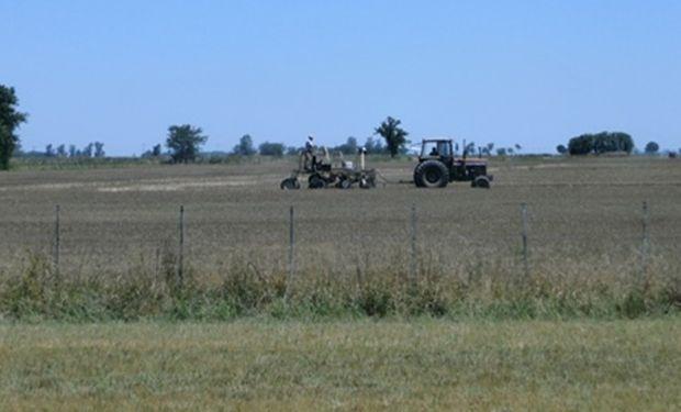 Lote de rastrojo de trigo, en pleno proceso de siembra de soja de segunda, ante la posibilidades de piso y clima, en el centro sur del departamento Las Colonias.-
