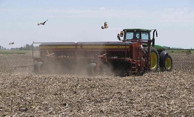 Lote de rastrojo de girasol, en pleno proceso de siembra de soja de segunda en el sureste del departamento Vera.-