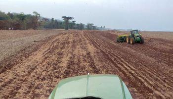 La siembra de soja en Brasil tiene el arranque más lento en 10 años