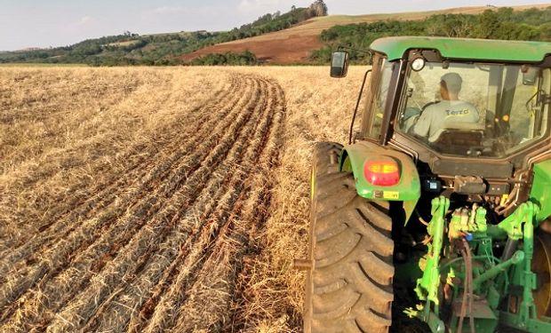 Soja: comienza a ganar ritmo la siembra en el mayor estado productor de Brasil