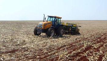Bajo distintos escenarios, avanza la siembra de soja en Brasil