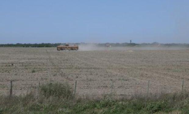 Lote siembra de soja de primera, antes de las lluvias, en el noreste del departamento Castellanos.-