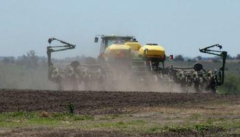 Uruguay: comenzó una nueva campaña de soja